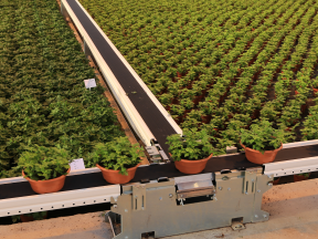 SmartFlo for cannabis growers